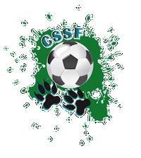 Club de soccer St-Félicien
